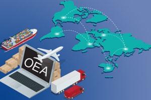 Guide OEA de l'OMD